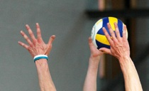 Volleyball hahnds block image